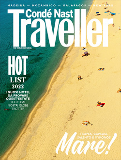 Traveller Digitale